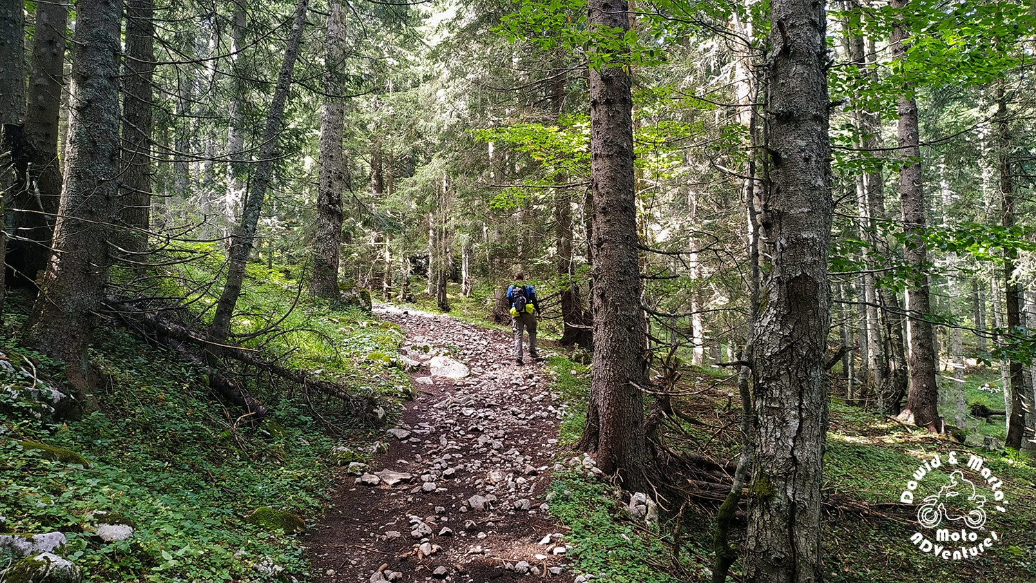Path to Durmitor Veliki Meded